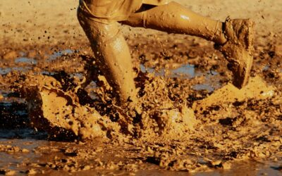 November 2020 Newsletter: Running through mud. Consistent Assignment.